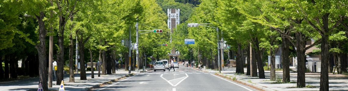岡大通学路